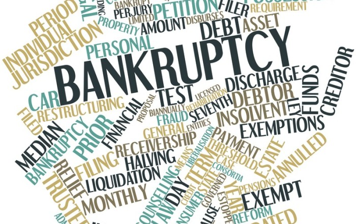 Bankruptcy and support payments